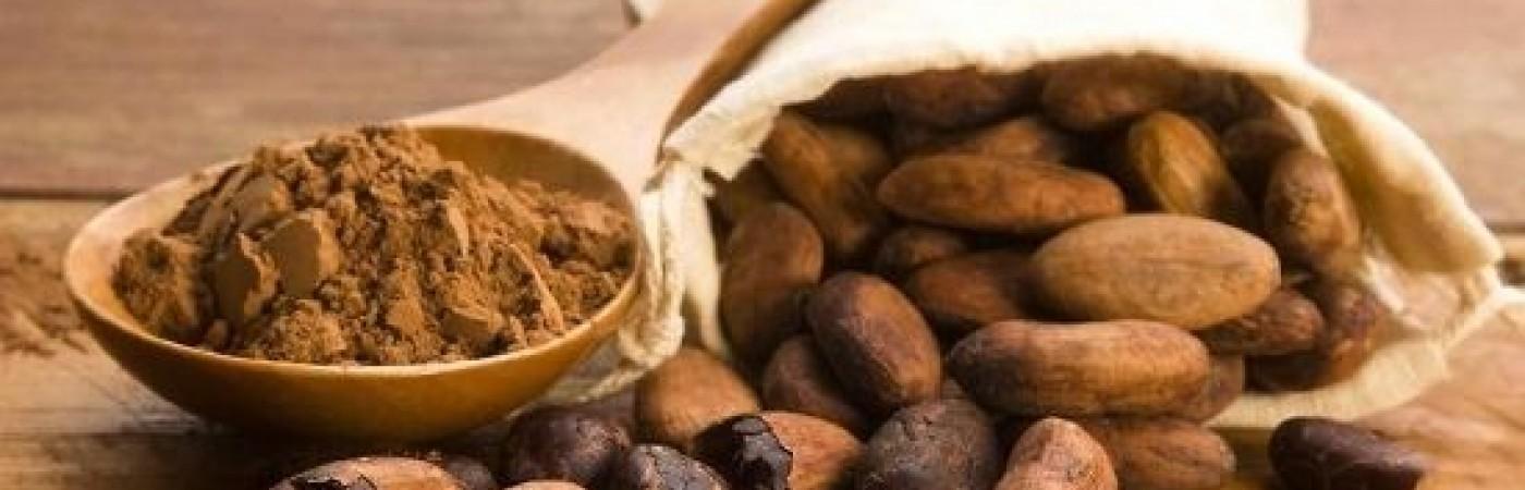 Какаото - тайната на боговете